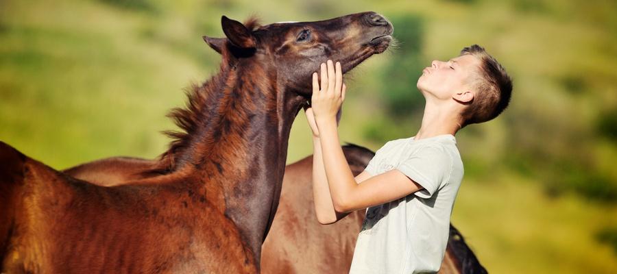 Teen with horse.jpg