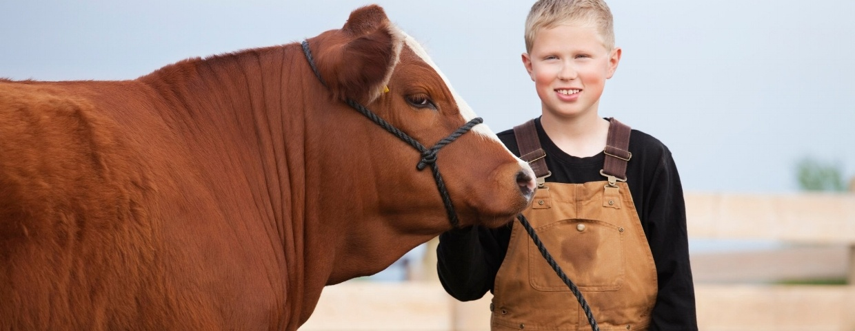 boy and cow.jpg